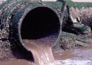 Puzza Di Fogna Cattivi Odori In Bagno E Nella Fossa